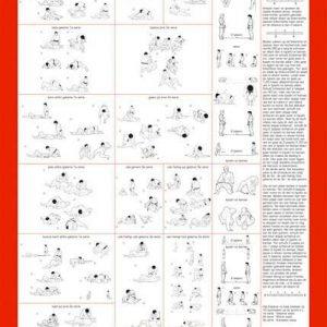 Matsuru instructieplaat Katame no Kata