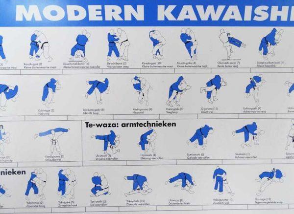Matsuru instructiekaart Kawaishi