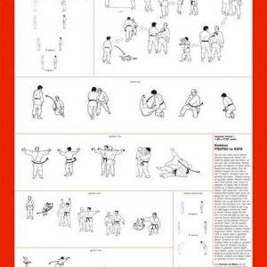 Matsuru instructieplaat Itsutsu no Kata